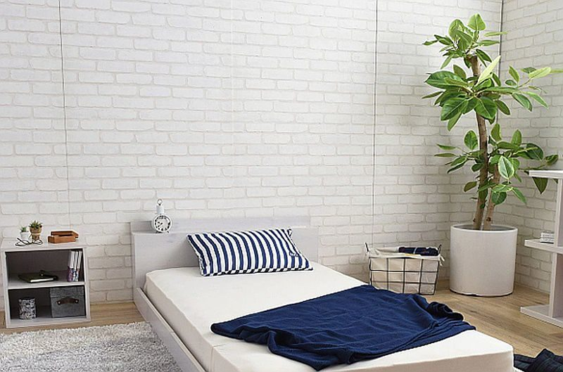 フロアベッドと観葉植物