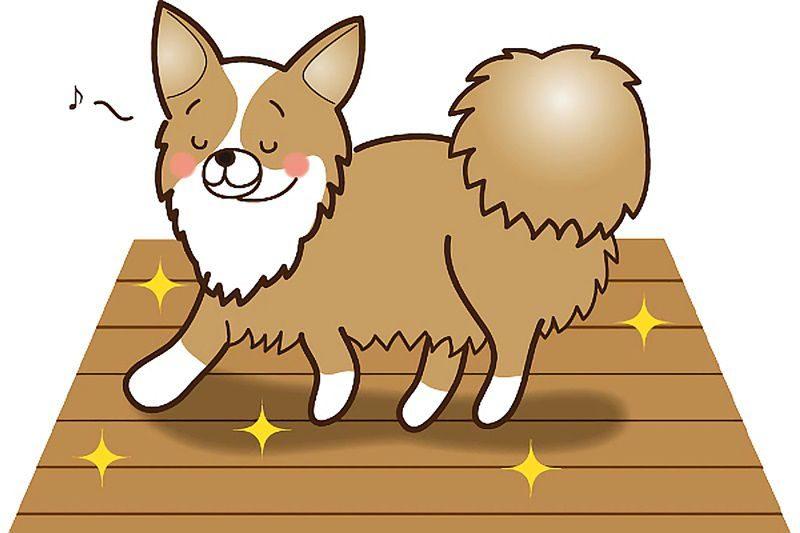 犬がフローリングで滑らない